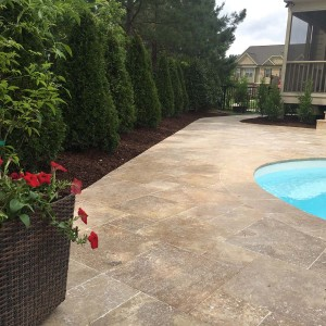 Prestige Landscaping of Wake Forest NC - Landscapers in Wake Forest NC Landscaping Companies - Gallery 11